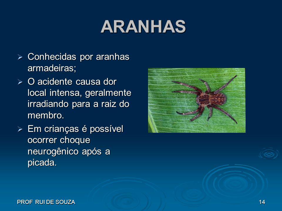 PROF RUI DE SOUZA14 ARANHAS ARANHAS Conhecidas por aranhas armadeiras; Conhecidas por aranhas armadeiras; O acidente causa dor local intensa, geralmen