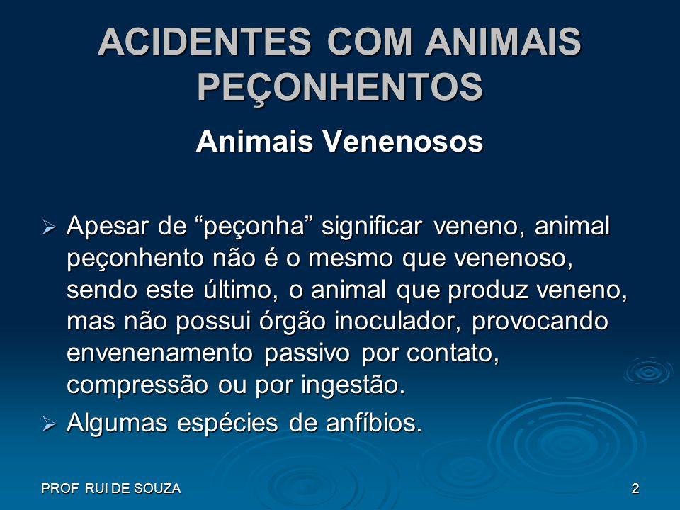 PROF RUI DE SOUZA2 ACIDENTES COM ANIMAIS PEÇONHENTOS Animais Venenosos Apesar de peçonha significar veneno, animal peçonhento não é o mesmo que veneno