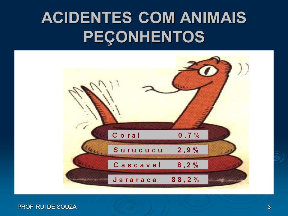 PROF RUI DE SOUZA3 ACIDENTES COM ANIMAIS PEÇONHENTOS