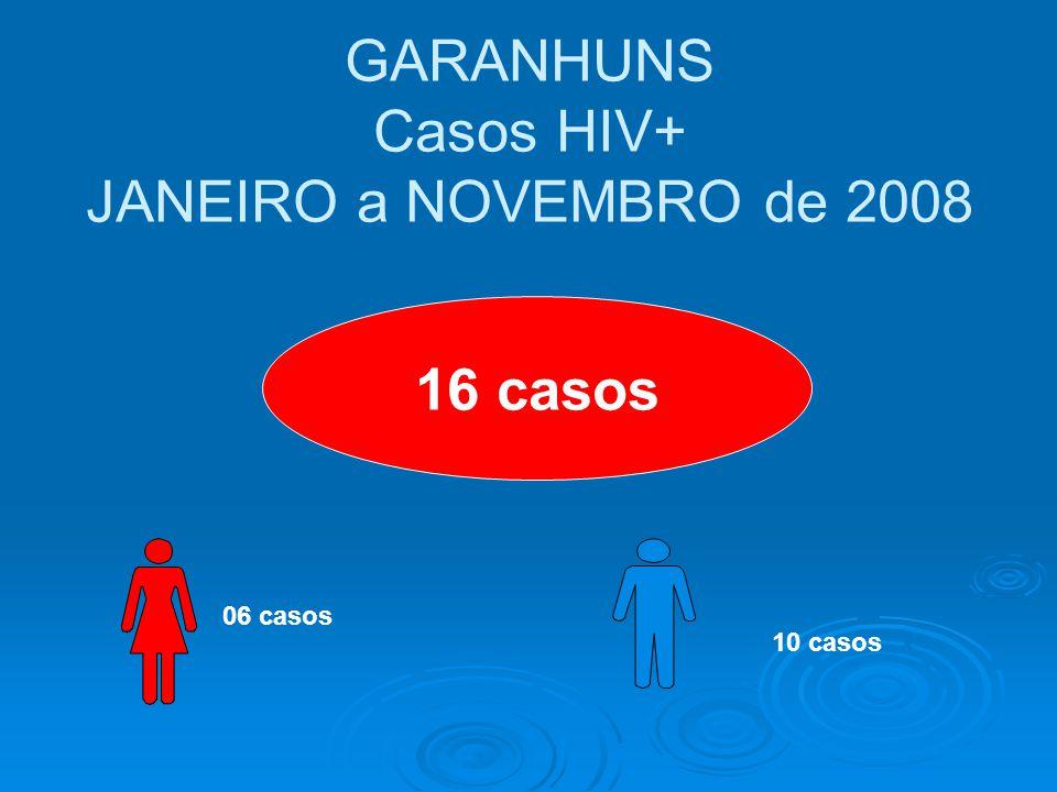 GARANHUNS Casos HIV+ JANEIRO a NOVEMBRO de 2008 16 casos 06 casos 10 casos