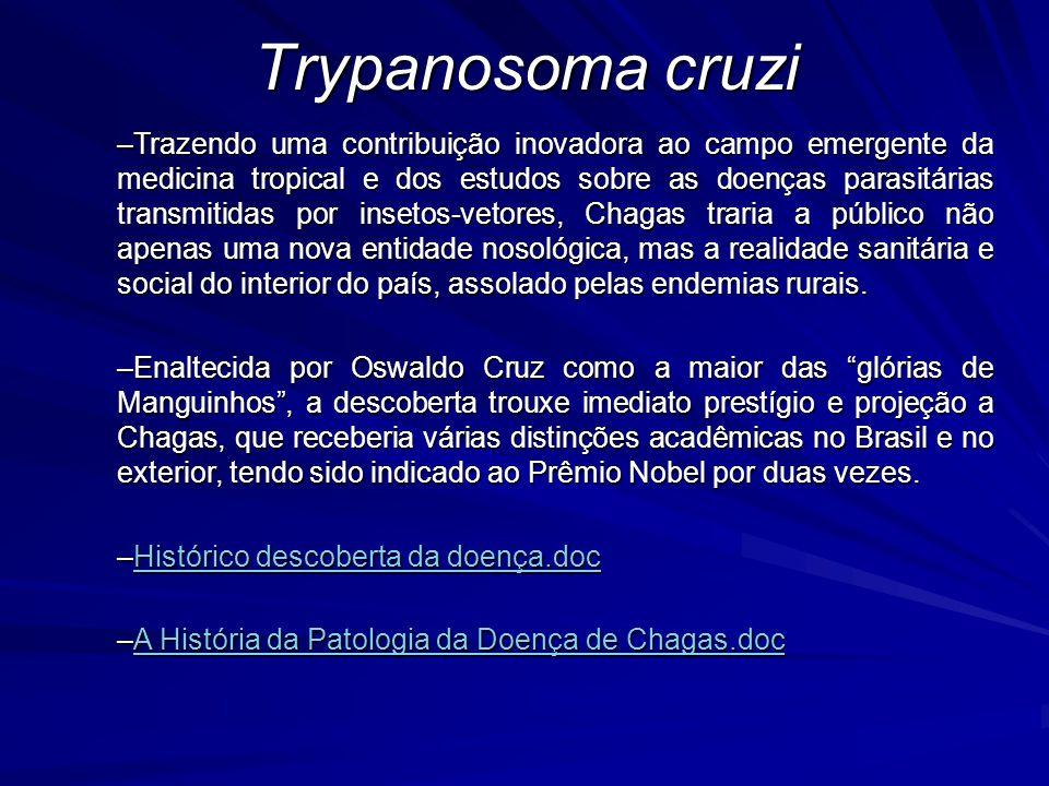 –Trazendo uma contribuição inovadora ao campo emergente da medicina tropical e dos estudos sobre as doenças parasitárias transmitidas por insetos-veto