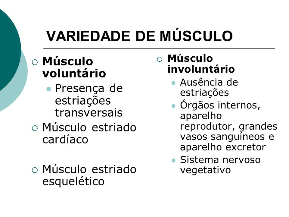 QUANTO A FORMA E ARRNJO Predominância do comprimento Músculos longos Comum nos membros Esternocleidomastói deo, bíceps Predominância do comprimento e largura Músculos largos Fibras em leque Glúteo máximo, peitoral maior