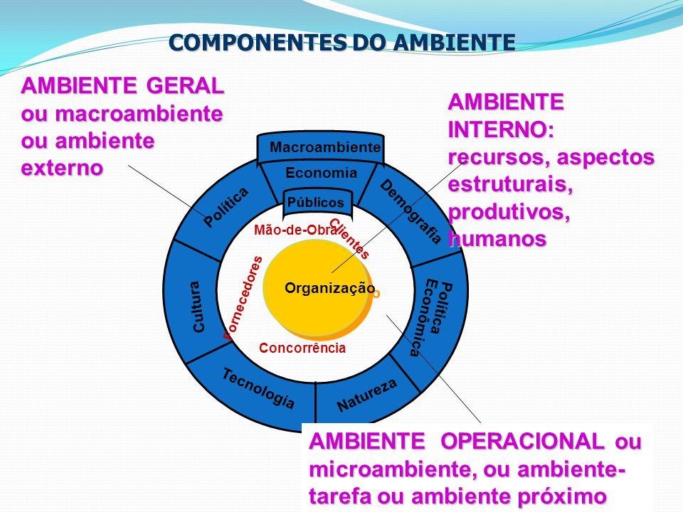 12 Organização Política Economia Demografia Tecnologia Natureza Cultura Política Econômica Públicos Macroambiente COMPONENTES DO AMBIENTE COMPONENTES