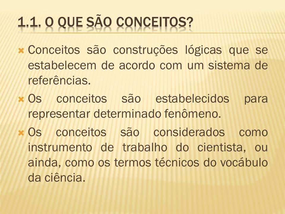 Conceitos são construções lógicas que se estabelecem de acordo com um sistema de referências. Os conceitos são estabelecidos para representar determin