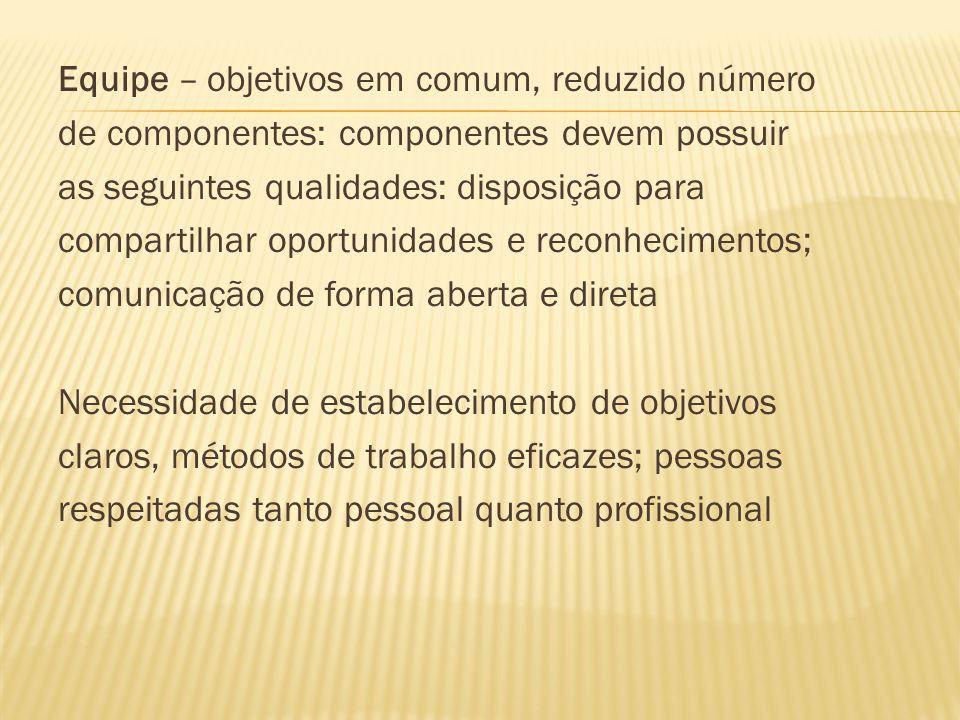 Equipe – objetivos em comum, reduzido número de componentes: componentes devem possuir as seguintes qualidades: disposição para compartilhar oportunid