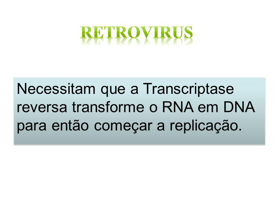 Necessitam que a Transcriptase reversa transforme o RNA em DNA para então começar a replicação.