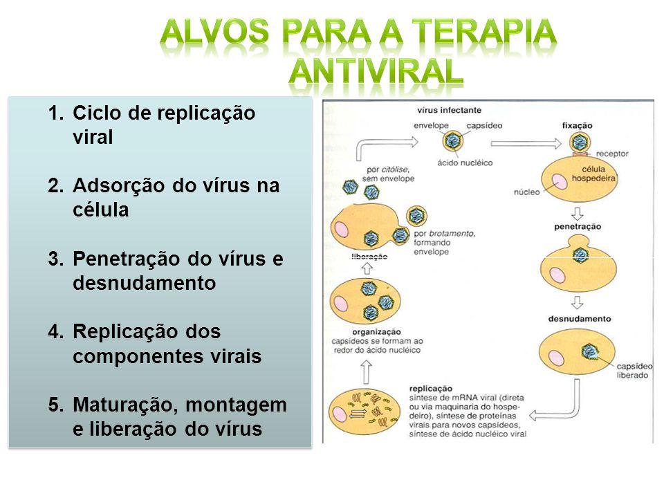 1.Ciclo de replicação viral 2.Adsorção do vírus na célula 3.Penetração do vírus e desnudamento 4.Replicação dos componentes virais 5.Maturação, montag
