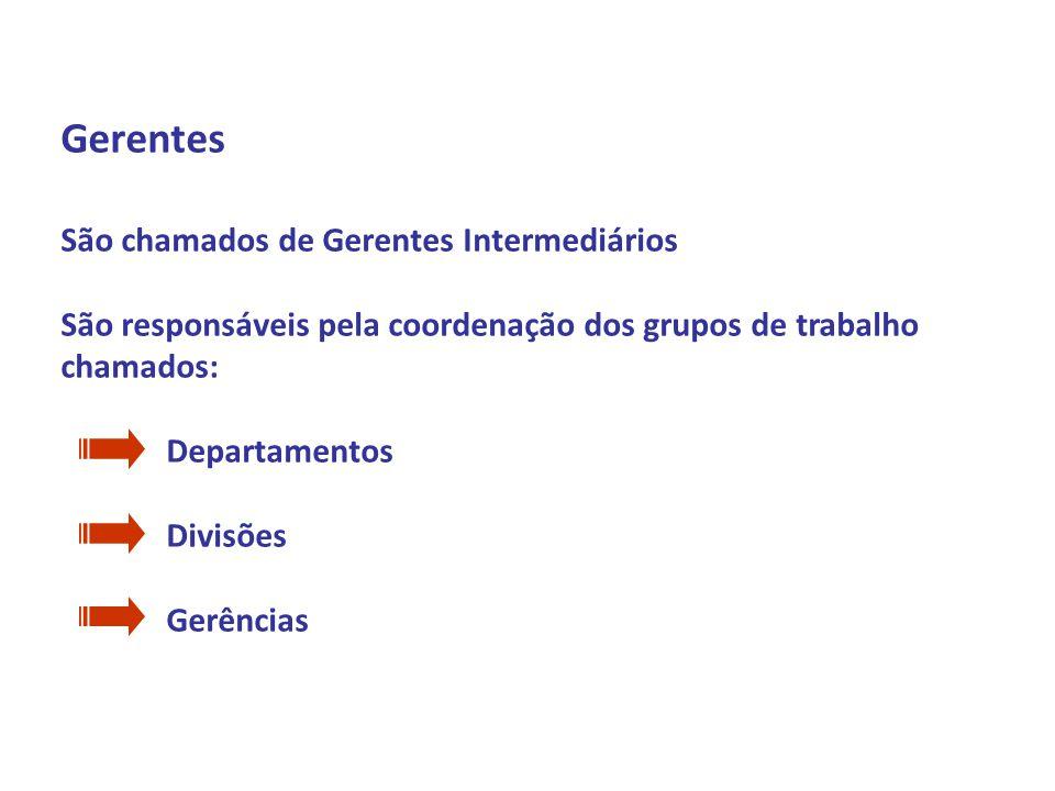 Profº Daniel Marim Disciplina: ADMINISTRAÇÃO 1º Semestre 2009 Gerentes São chamados de Gerentes Intermediários São responsáveis pela coordenação dos g
