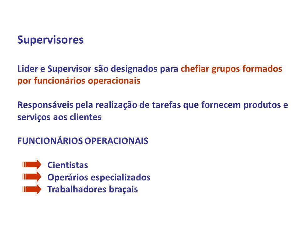 Profº Daniel Marim Disciplina: ADMINISTRAÇÃO 1º Semestre 2009 Supervisores Lider e Supervisor são designados para chefiar grupos formados por funcioná