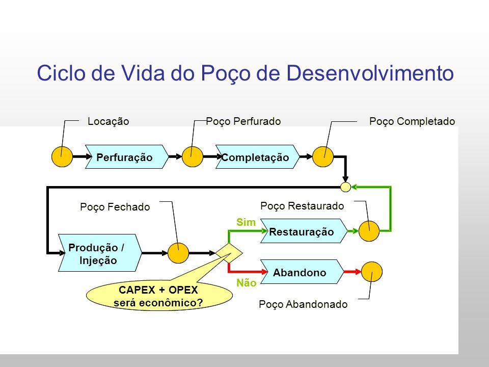 Ciclo de Vida do Poço de Desenvolvimento Perfuração Restauração Abandono CAPEX + OPEX será econômico? Sim Não Poço Perfurado Poço Abandonado Locação C
