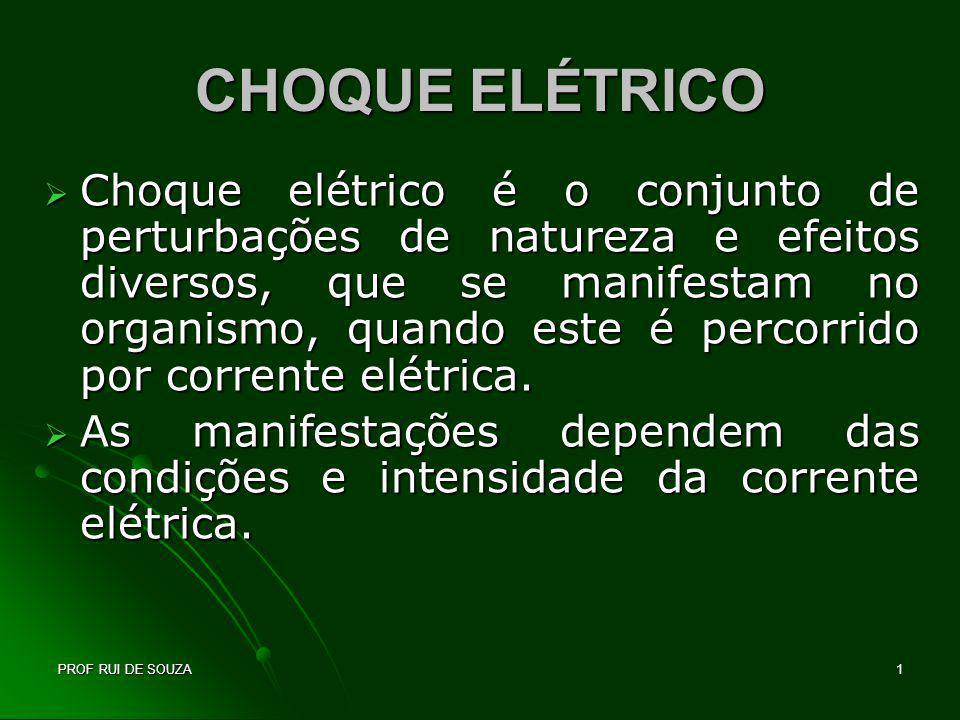 PROF RUI DE SOUZA2 CHOQUE ELÉTRICO A eletricidade pode matar ou produzir ferimentos(queimaduras).