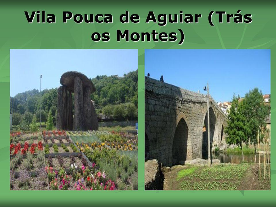 Vila Pouca de Aguiar (Trás os Montes)