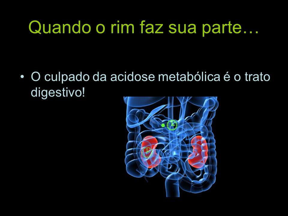 Quando o rim faz sua parte… O culpado da acidose metabólica é o trato digestivo!