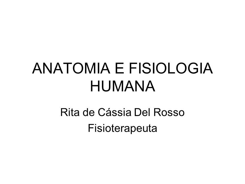 ANATOMIA E FISIOLOGIA HUMANA Rita de Cássia Del Rosso Fisioterapeuta
