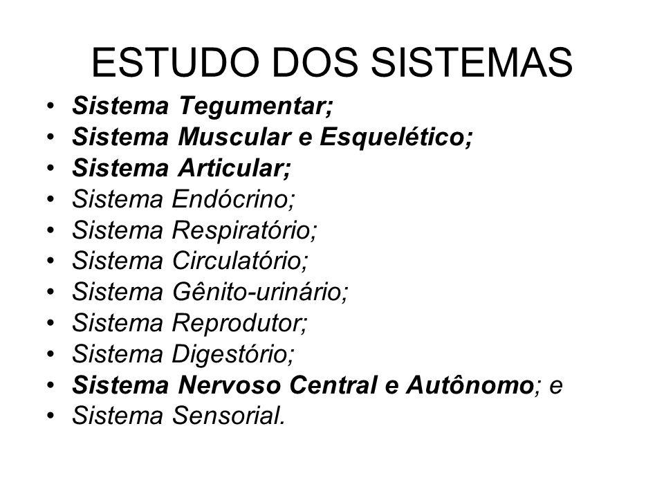 ESTUDO DOS SISTEMAS Sistema Tegumentar; Sistema Muscular e Esquelético; Sistema Articular; Sistema Endócrino; Sistema Respiratório; Sistema Circulatór