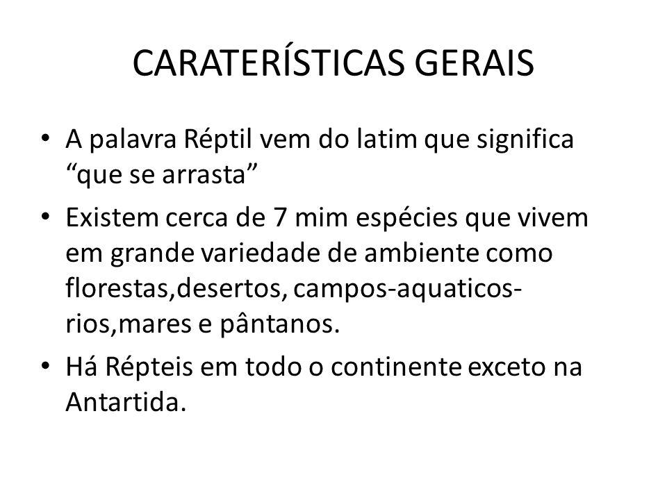 CARATERÍSTICAS GERAIS A palavra Réptil vem do latim que significa que se arrasta Existem cerca de 7 mim espécies que vivem em grande variedade de ambi