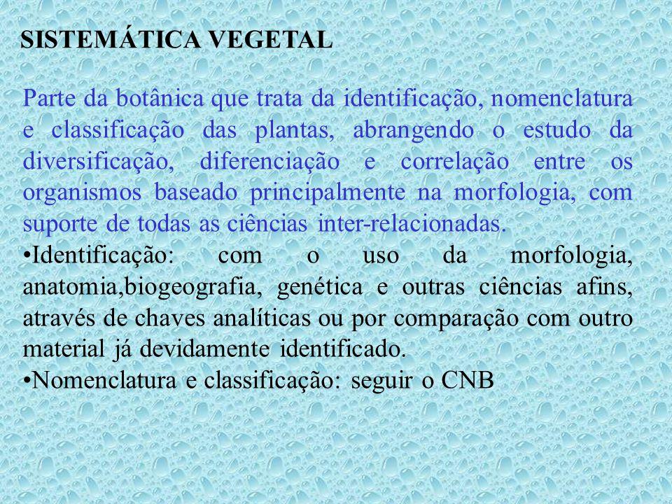 Tipos nomenclaturais para espécie ou categorias infra- específicas – continuação.