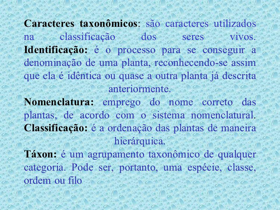 OBJETIVOS DA SISTEMÁTICA VEGETAL Identificar, dar nomes e descrever os organismos; Inventariar os organismos segundo grupos hierárquicos; Permitir a recuperação de informações; Organizar sistemas de classificação que mostrem os parentescos entre os organismos; Entender os processos evolutivos.