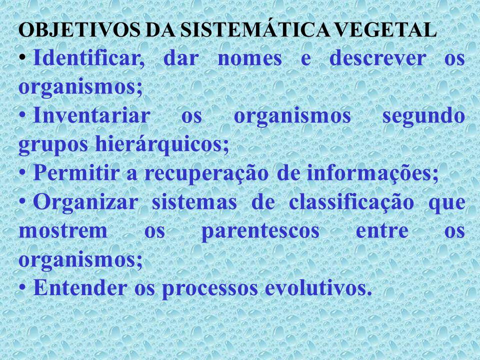 Sistema Classificação DESCOBRIR I.Novas espécies A.Coleções Coleta e preservação de espécimes Coleções locais, regionais, nacionais ou mundiais; Espécies nativas a serem estudadas, espécies conhecidas e\ou desconhecidas; Espécies de valor econômico;