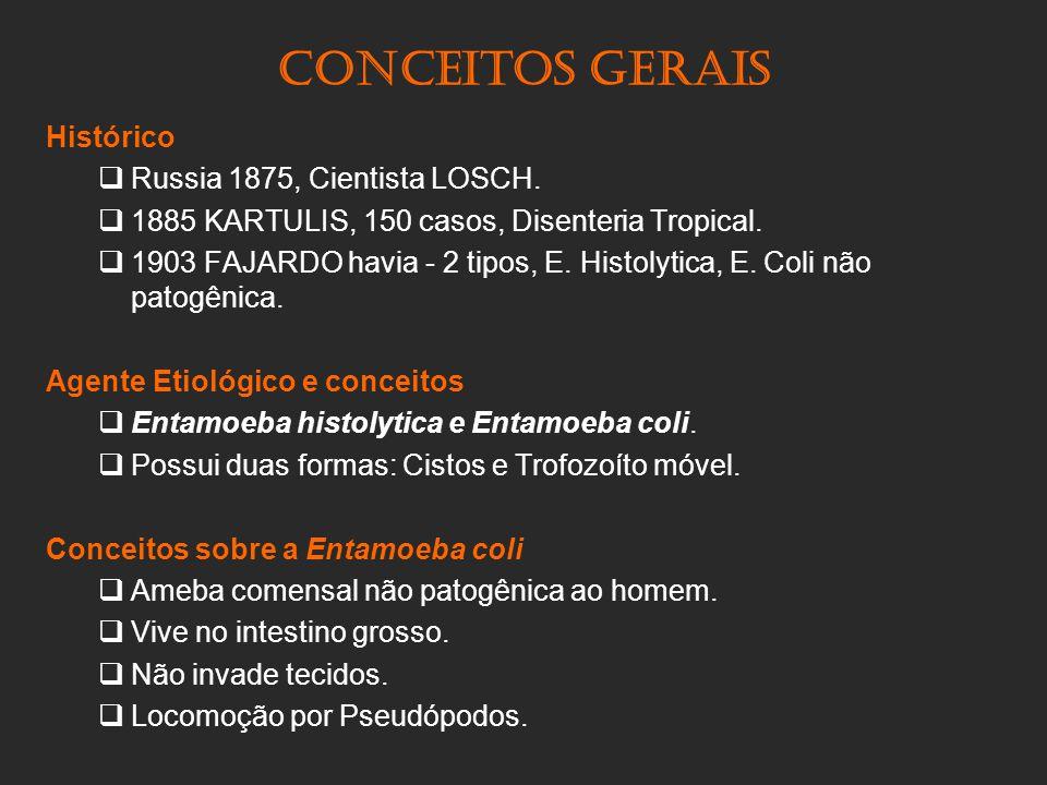 Conceitos gerais Histórico Russia 1875, Cientista LOSCH.