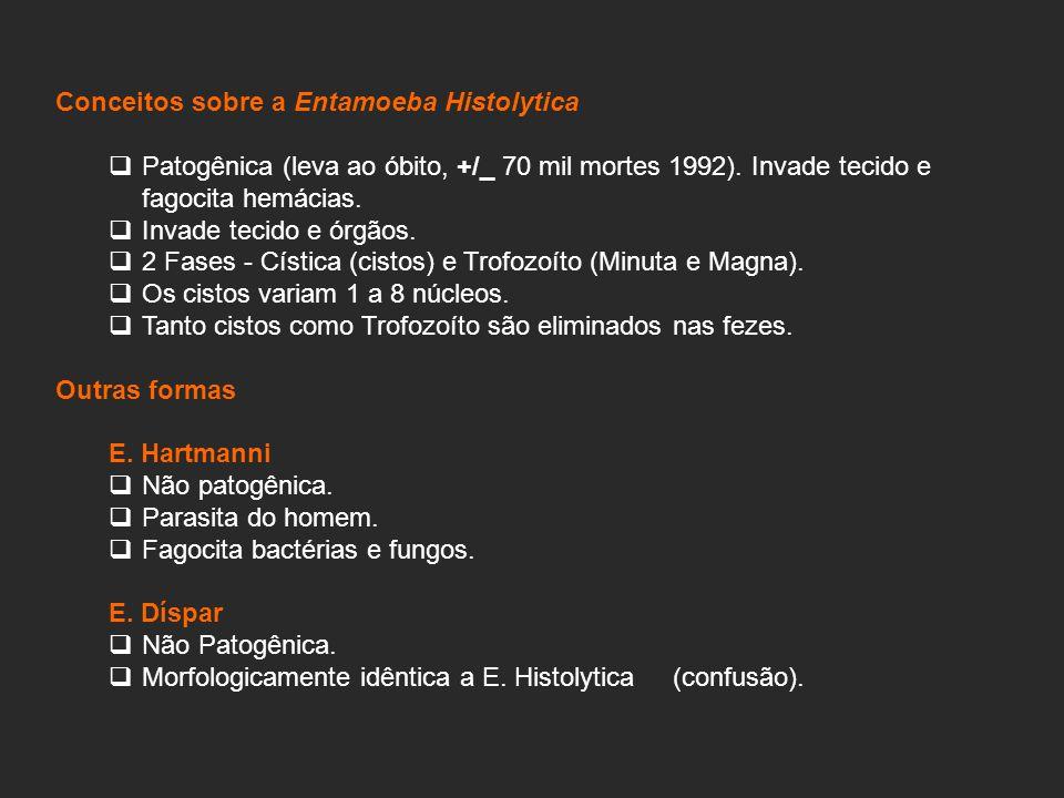 Conceitos sobre a Entamoeba Histolytica Patogênica (leva ao óbito, +/_ 70 mil mortes 1992).