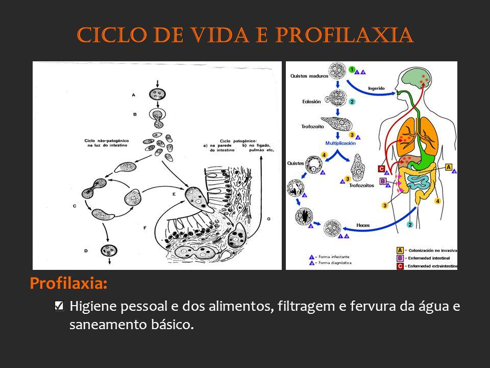 Ciclo de vida e profilaxia Profilaxia: Higiene pessoal e dos alimentos, filtragem e fervura da água e saneamento básico.