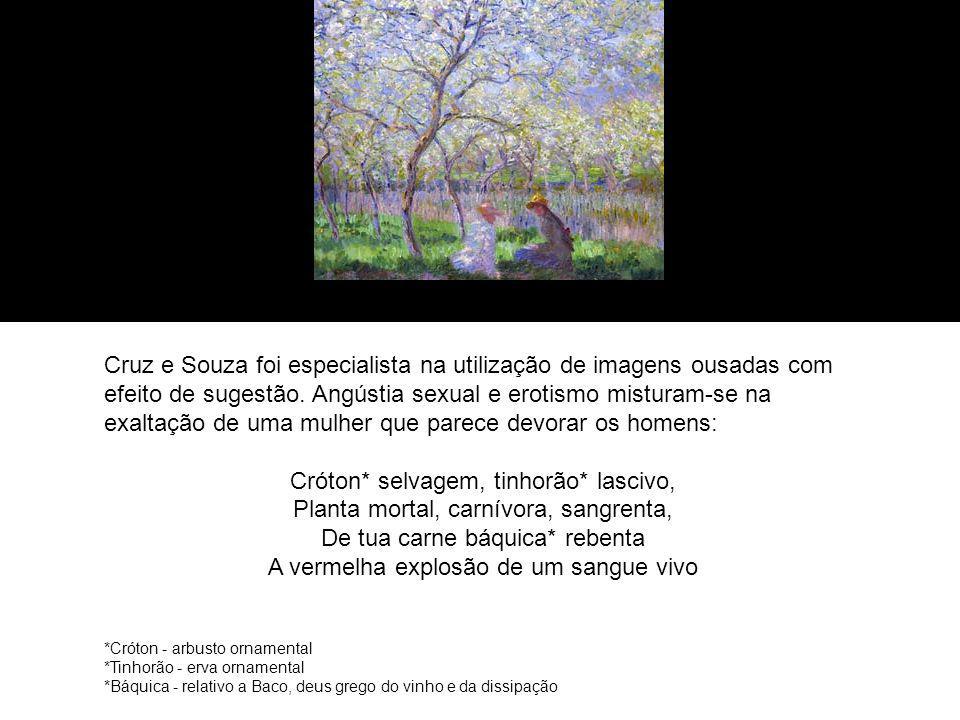 Cruz e Souza foi especialista na utilização de imagens ousadas com efeito de sugestão.