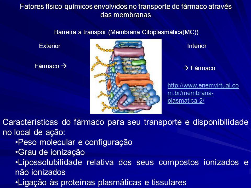 Fatores físico-químicos envolvidos no transporte do fármaco através das membranas Características do fármaco para seu transporte e disponibilidade no