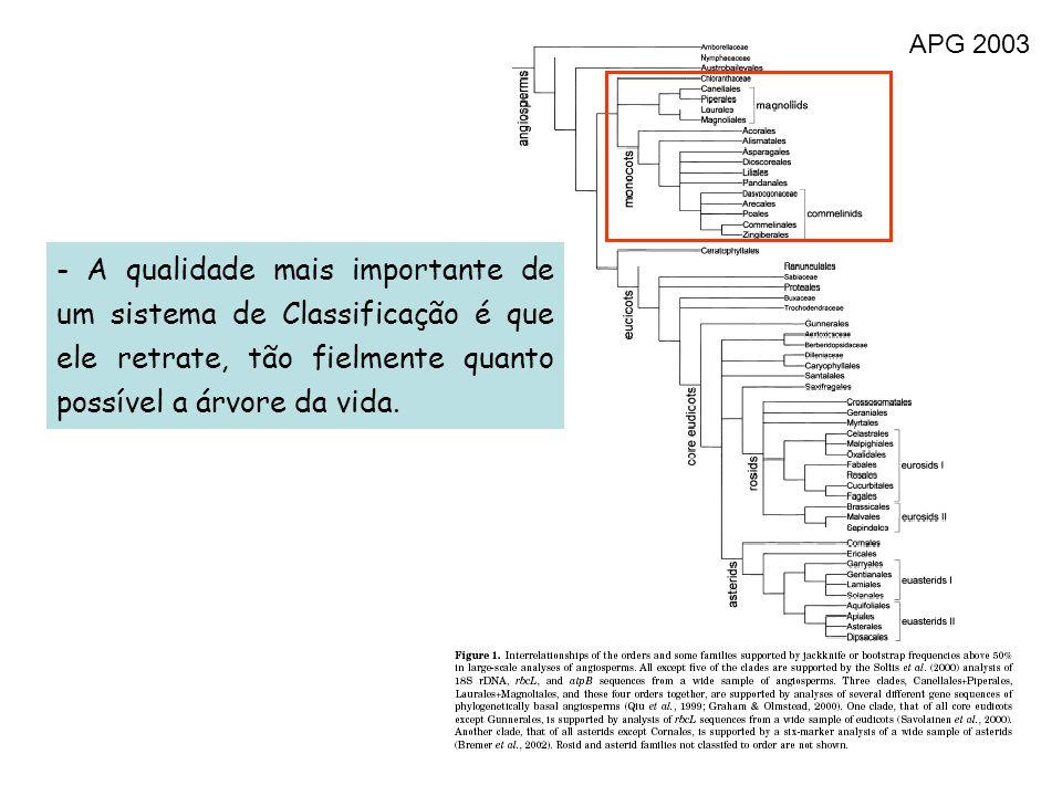 APG 2003 - A qualidade mais importante de um sistema de Classificação é que ele retrate, tão fielmente quanto possível a árvore da vida.