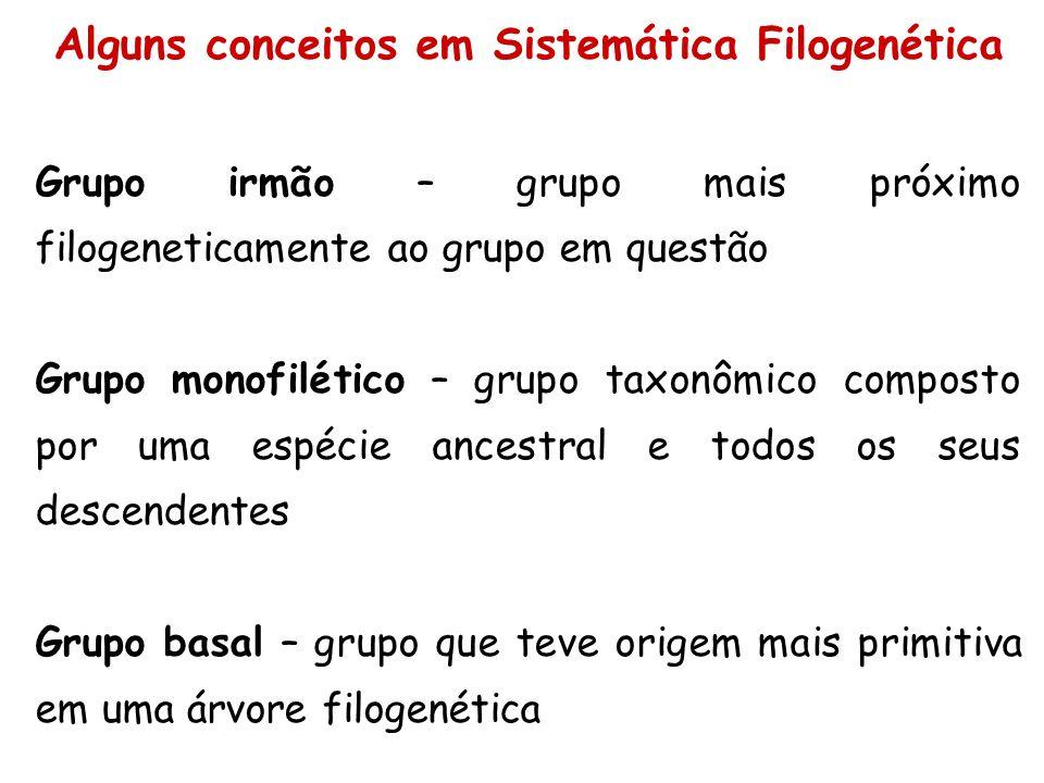 Grupo irmão – grupo mais próximo filogeneticamente ao grupo em questão Grupo monofilético – grupo taxonômico composto por uma espécie ancestral e todo