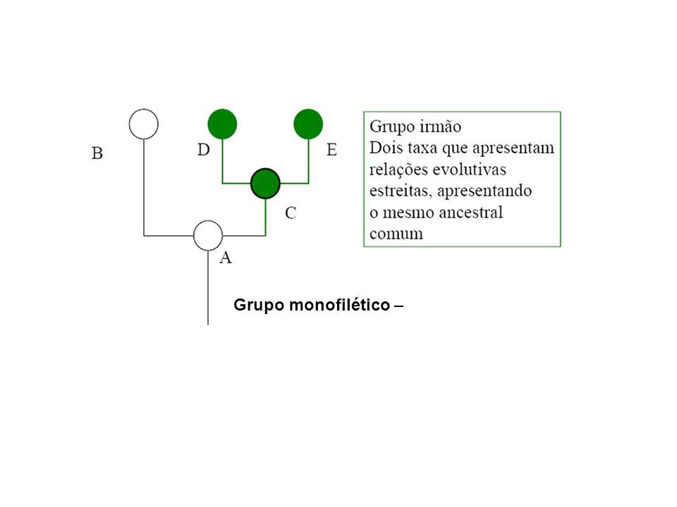 Grupo monofilético –