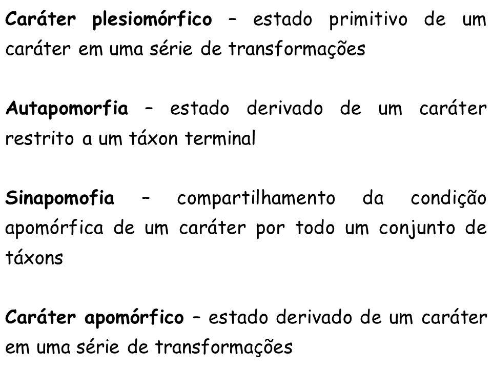 Caráter plesiomórfico – estado primitivo de um caráter em uma série de transformações Autapomorfia – estado derivado de um caráter restrito a um táxon