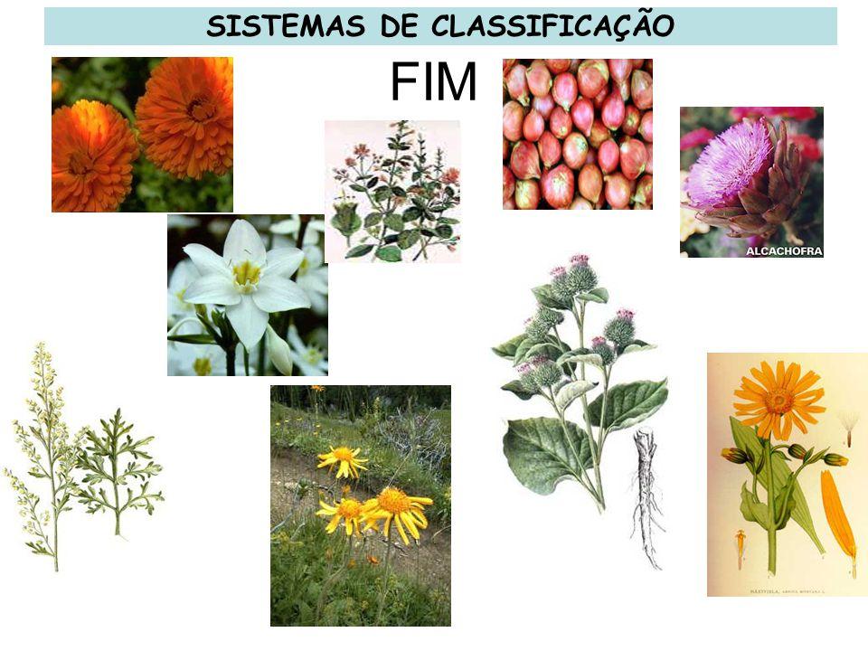 FIM SISTEMAS DE CLASSIFICAÇÃO