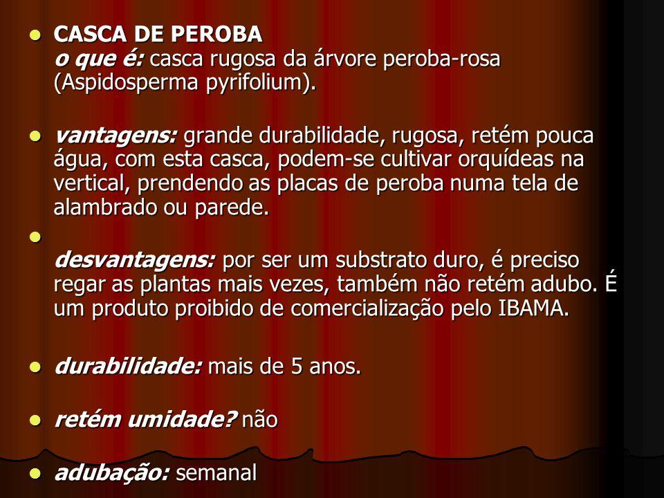 CASCA DE PEROBA o que é: casca rugosa da árvore peroba-rosa (Aspidosperma pyrifolium). CASCA DE PEROBA o que é: casca rugosa da árvore peroba-rosa (As