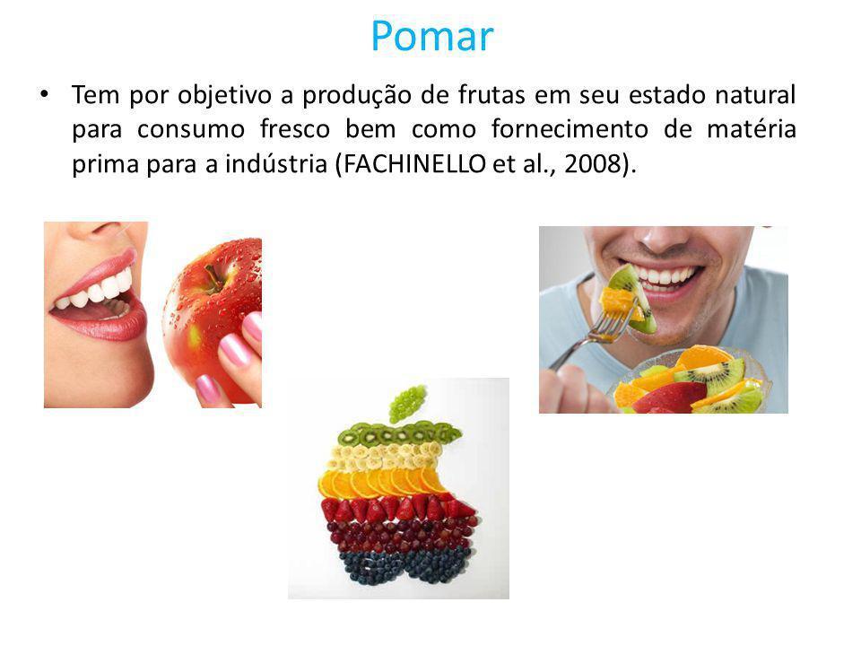 Pomar Tem por objetivo a produção de frutas em seu estado natural para consumo fresco bem como fornecimento de matéria prima para a indústria (FACHINE