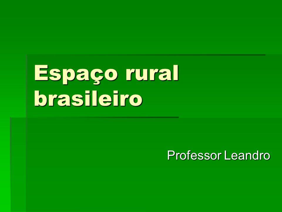Espaço rural brasileiro Professor Leandro