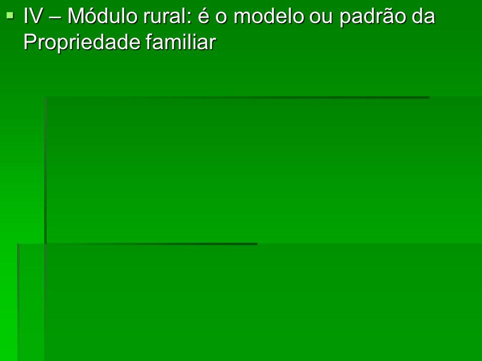 IV – Módulo rural: é o modelo ou padrão da Propriedade familiar IV – Módulo rural: é o modelo ou padrão da Propriedade familiar