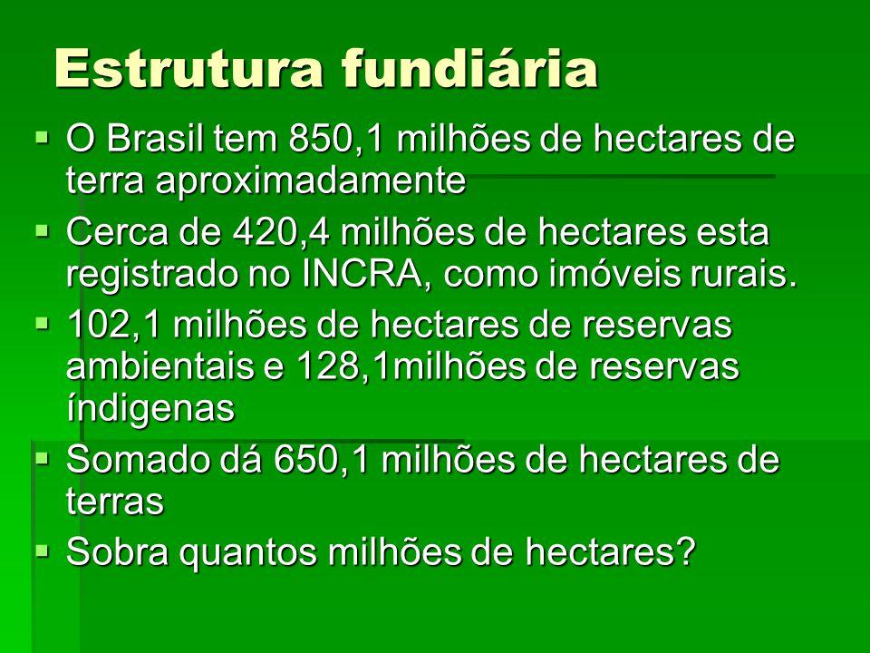 Estrutura fundiária O Brasil tem 850,1 milhões de hectares de terra aproximadamente O Brasil tem 850,1 milhões de hectares de terra aproximadamente Ce