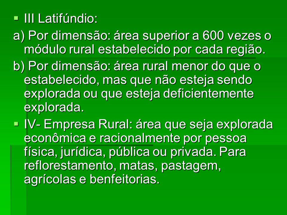 III Latifúndio: III Latifúndio: a) Por dimensão: área superior a 600 vezes o módulo rural estabelecido por cada região. b) Por dimensão: área rural me