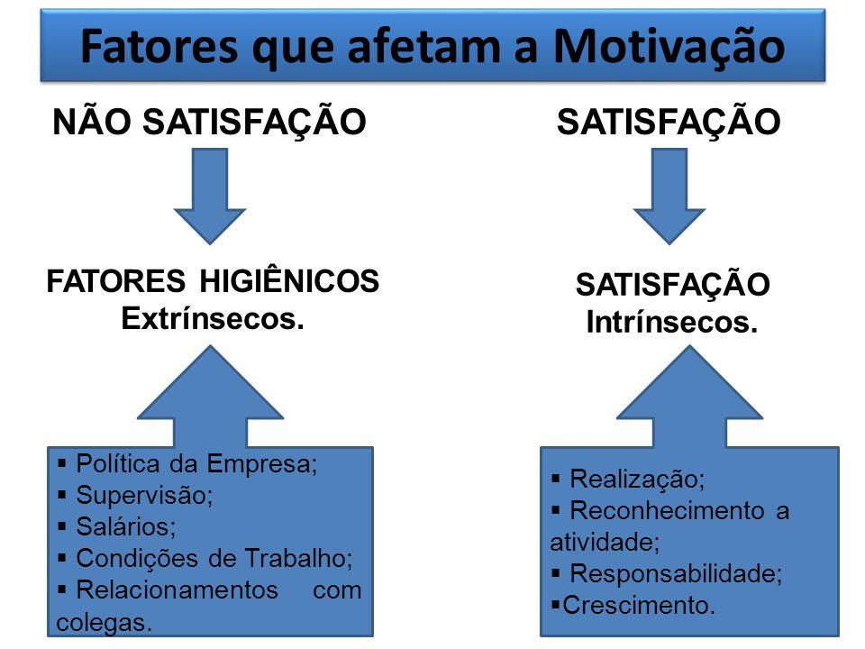 Fatores que afetam a Motivação NÃO SATISFAÇÃOSATISFAÇÃO FATORES HIGIÊNICOS Extrínsecos. SATISFAÇÃO Intrínsecos. Política da Empresa; Supervisão; Salár
