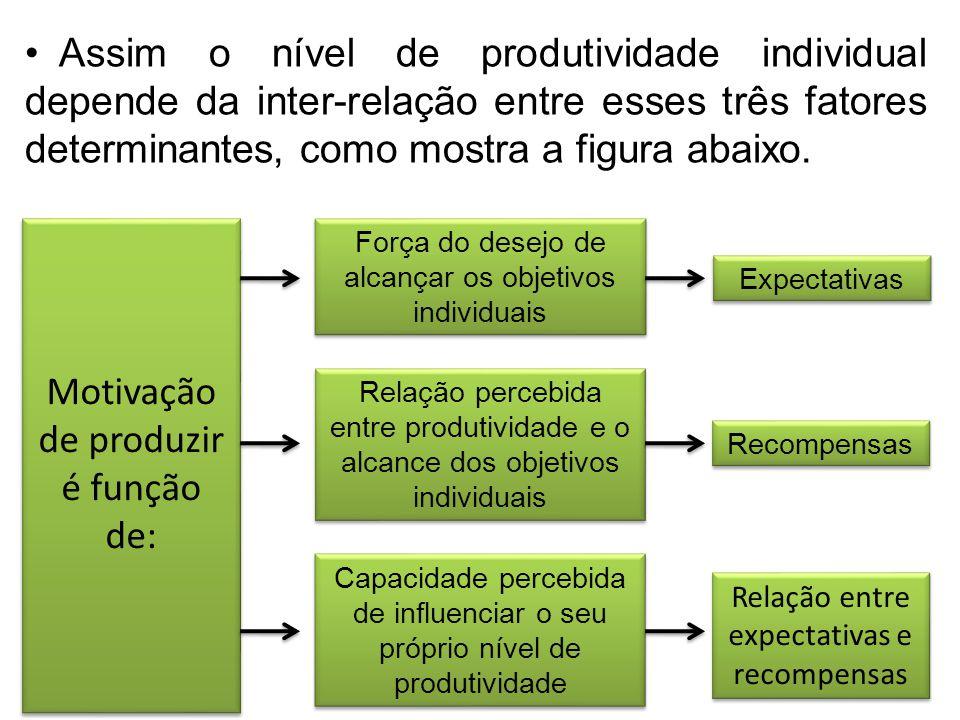 Motivação de produzir é função de: Força do desejo de alcançar os objetivos individuais Relação percebida entre produtividade e o alcance dos objetivo