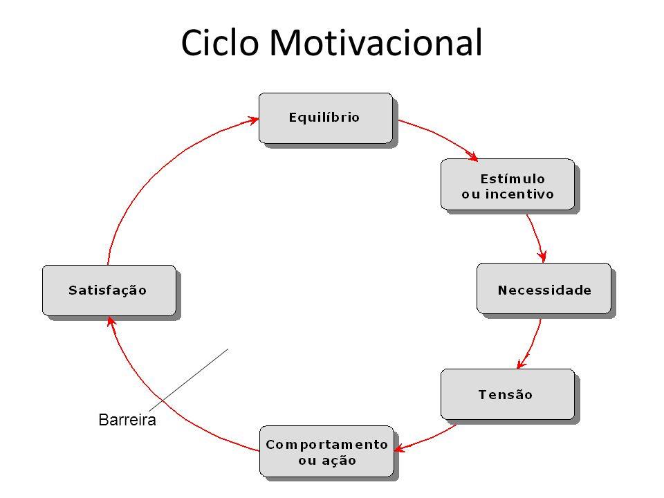 Ciclo Motivacional Barreira
