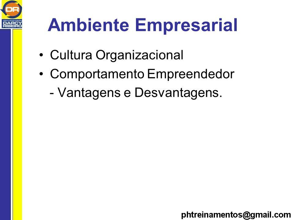 Ambiente Empresarial Cultura Organizacional Comportamento Empreendedor - Vantagens e Desvantagens.