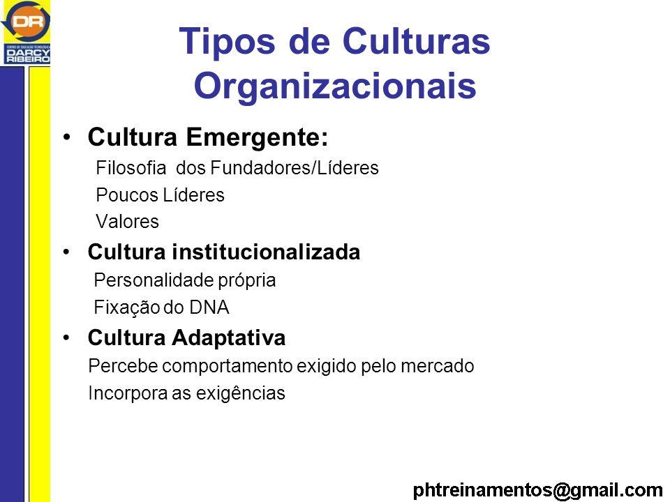 Tipos de Culturas Organizacionais Cultura Emergente: Filosofia dos Fundadores/Líderes Poucos Líderes Valores Cultura institucionalizada Personalidade própria Fixação do DNA Cultura Adaptativa Percebe comportamento exigido pelo mercado Incorpora as exigências