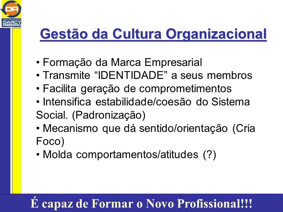 Gestão da Cultura Organizacional Formação da Marca Empresarial Transmite IDENTIDADE a seus membros Facilita geração de comprometimentos Intensifica estabilidade/coesão do Sistema Social.
