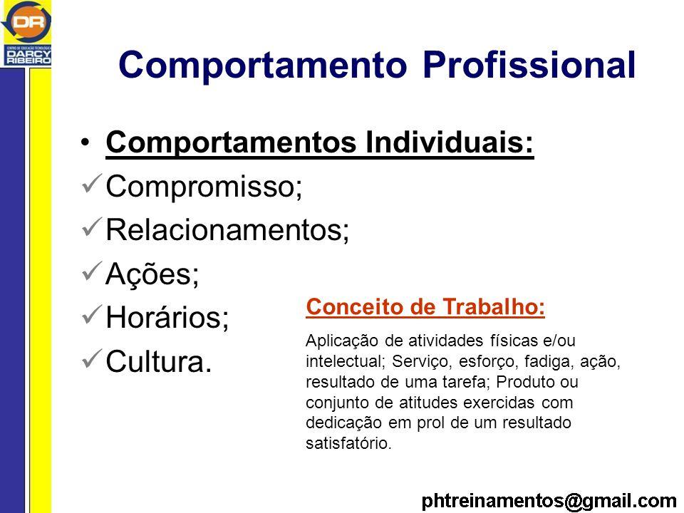 Comportamento Profissional Comportamentos Individuais: Compromisso; Relacionamentos; Ações; Horários; Cultura.