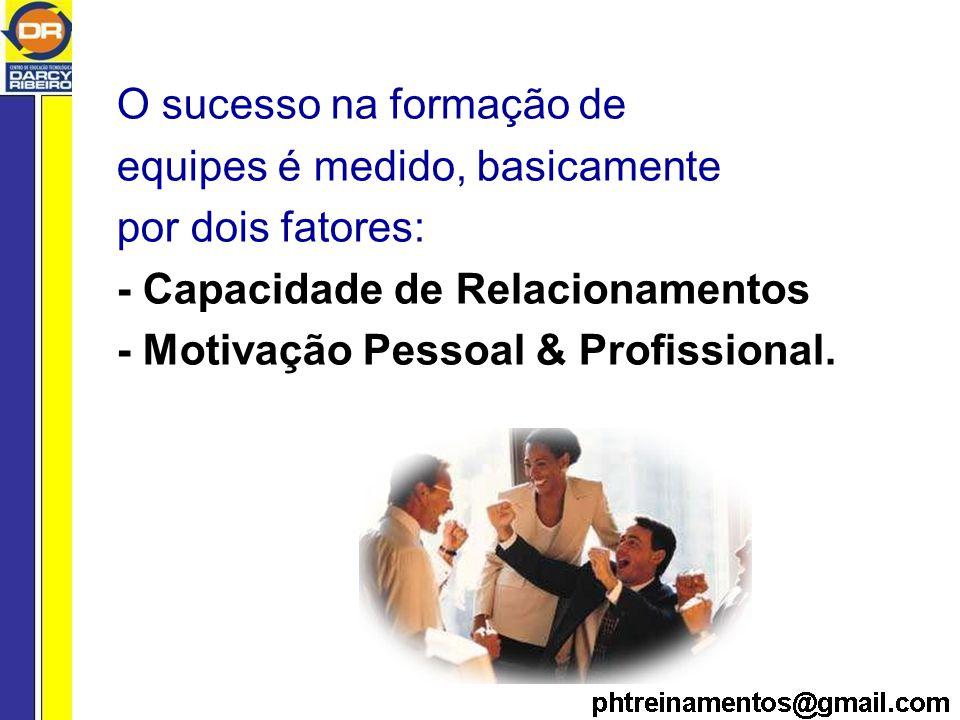 O sucesso na formação de equipes é medido, basicamente por dois fatores: - Capacidade de Relacionamentos - Motivação Pessoal & Profissional.