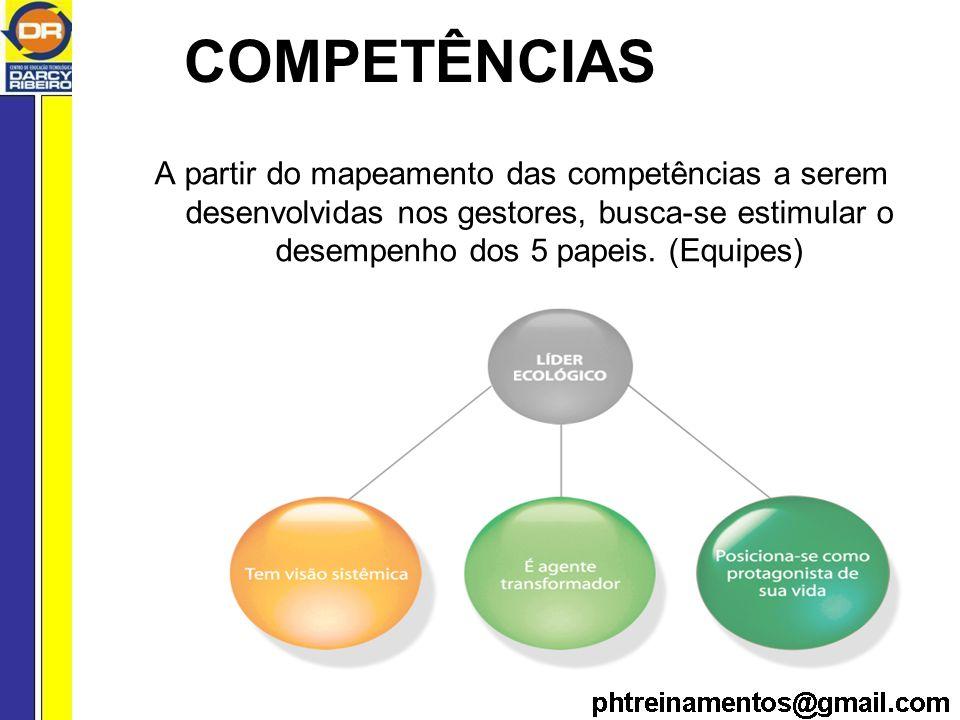 A partir do mapeamento das competências a serem desenvolvidas nos gestores, busca-se estimular o desempenho dos 5 papeis.