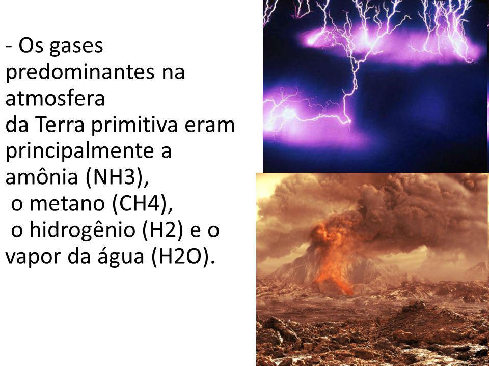 - Os gases predominantes na atmosfera da Terra primitiva eram principalmente a amônia (NH3), o metano (CH4), o hidrogênio (H2) e o vapor da água (H2O).