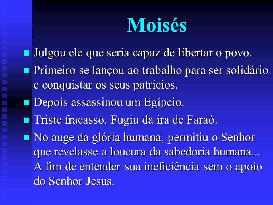 Moisés Julgou ele que seria capaz de libertar o povo. Julgou ele que seria capaz de libertar o povo. Primeiro se lançou ao trabalho para ser solidário